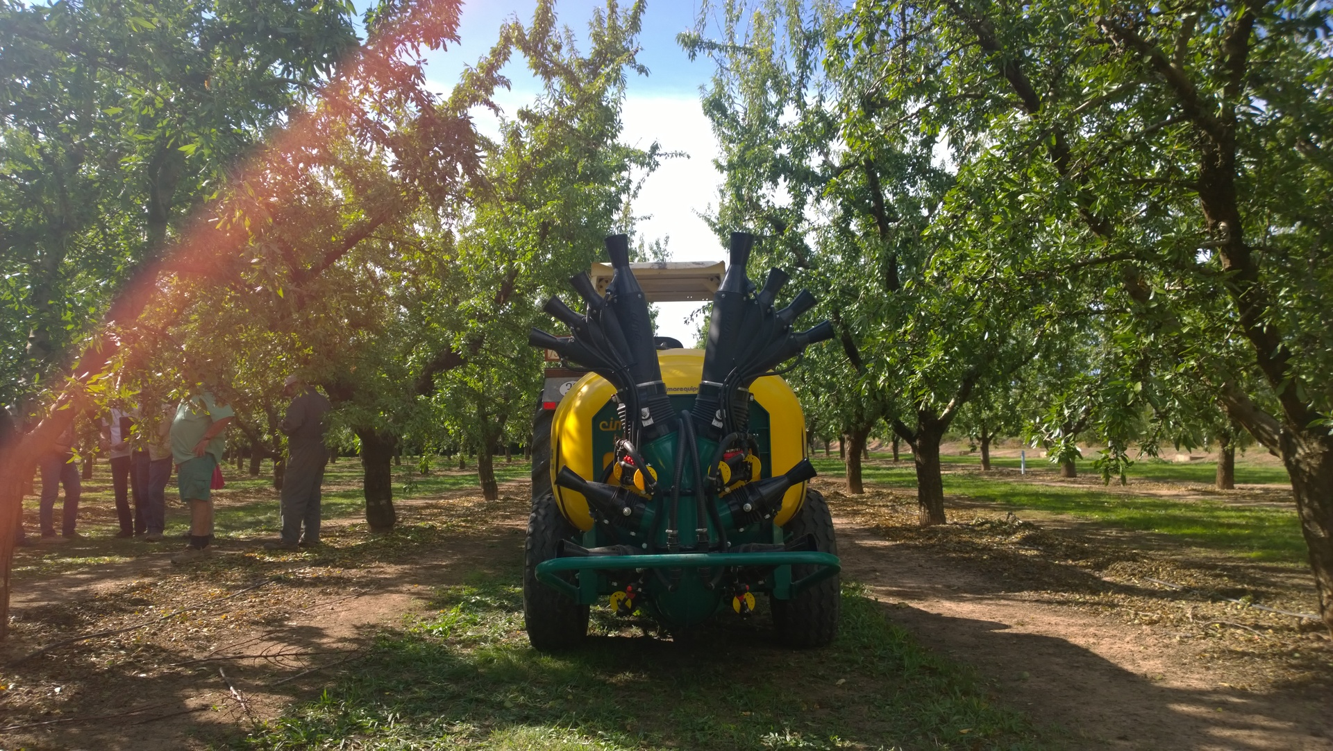 4 lower cannons and upper double Olive sprayhead  – almond trees