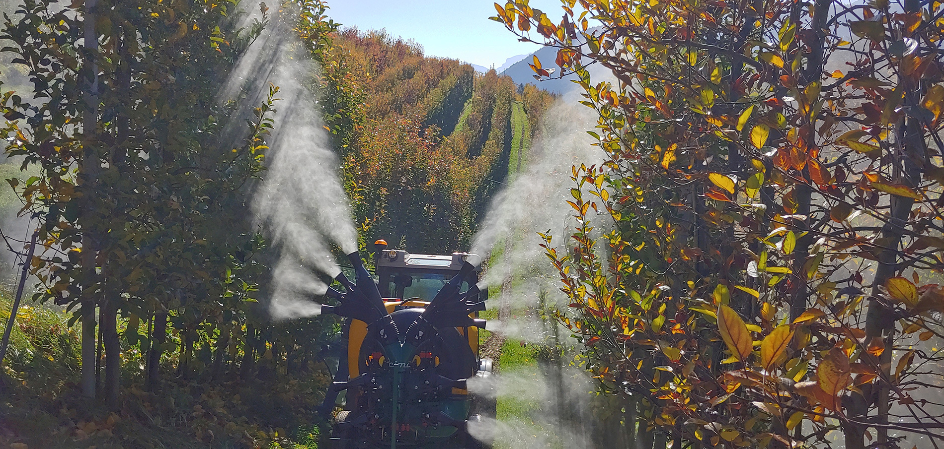 3-point mounted sprayer - low volume - 4 lower cannons and upper double Olive sprayhead - Apple