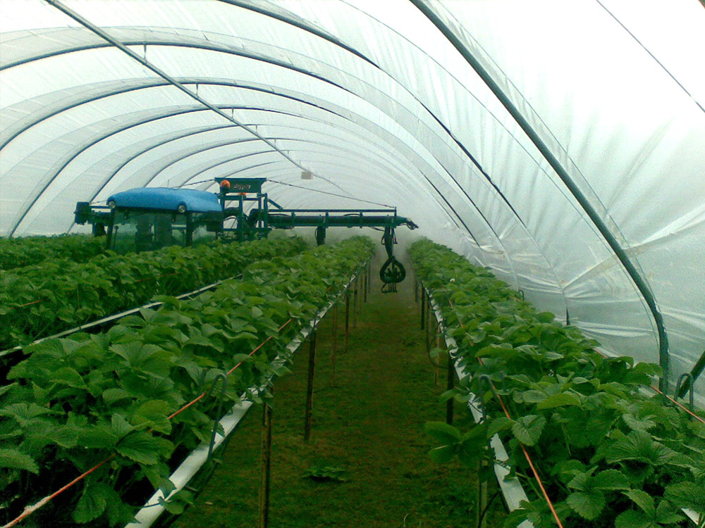 Hydraulic pneumatic boom for tunnel - Strawberries